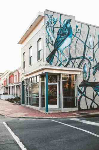 01 Richmond Virginia RVA – Rogue Restaurant Cocktail Bar – Jackson Ward Neighborhood Home Community – Brick Row House Corner Lot Mural
