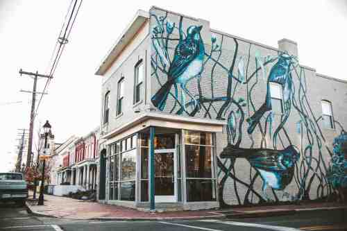 02 Richmond Virginia RVA – Rogue Restaurant Cocktail Bar – Jackson Ward Neighborhood Home Community – Brick Row House Corner Lot Mural